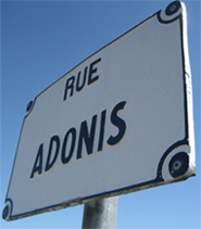 Aller sur www.groupe-adonis.fr !