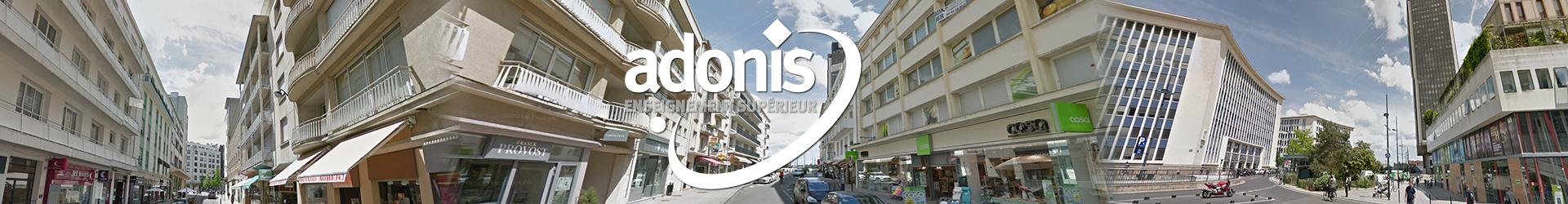 Bandeau école Adonis Nantes